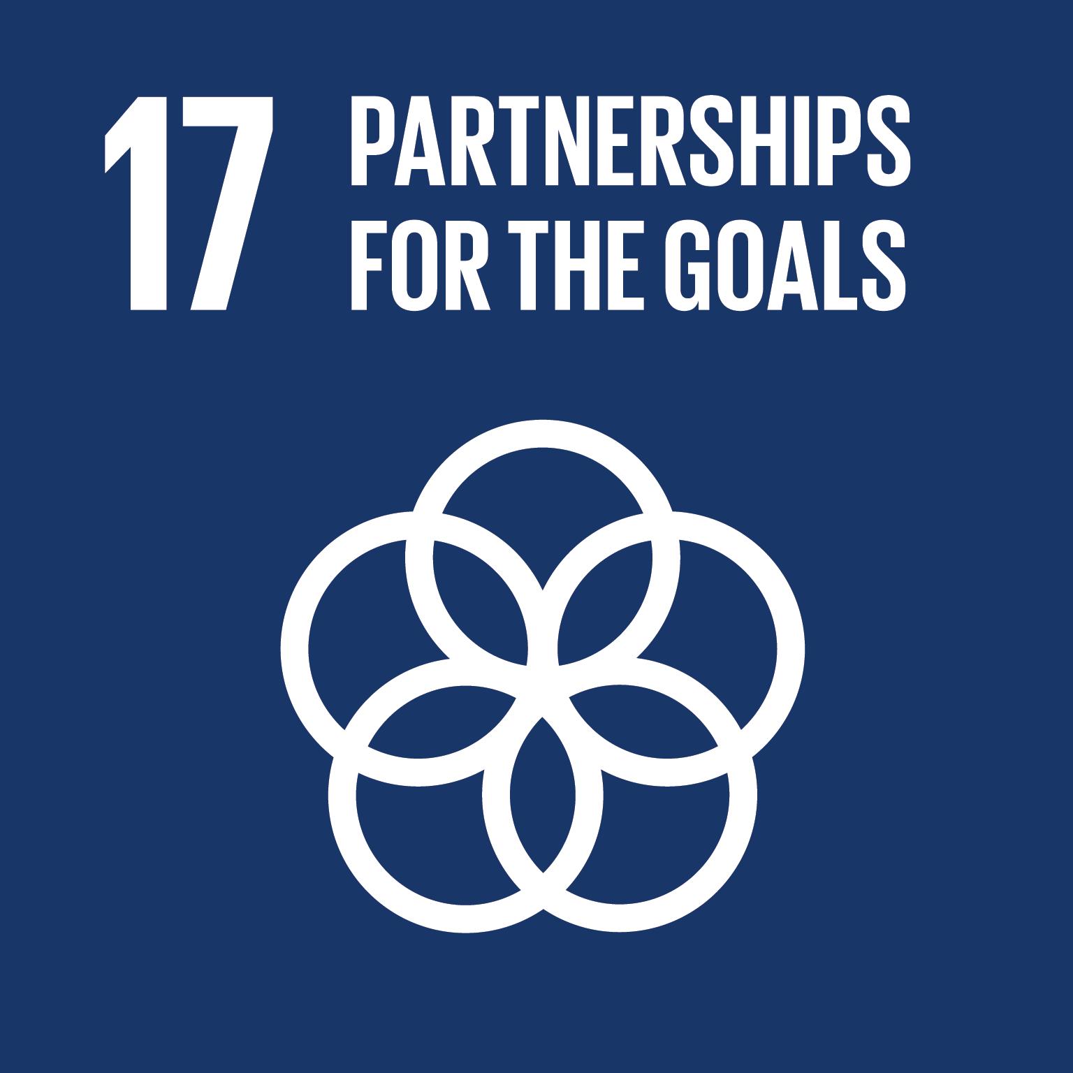 UN SDG 17 Partnerships for the goals